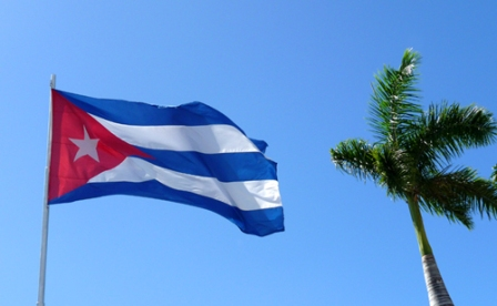 Bandera cubana y palma real